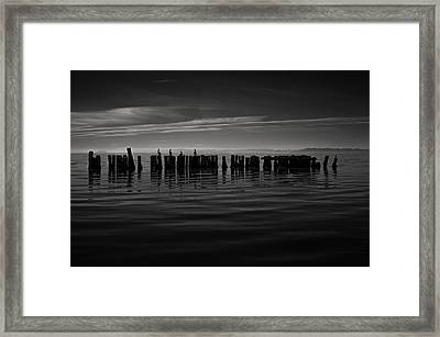 Salton Sea Piles Framed Print