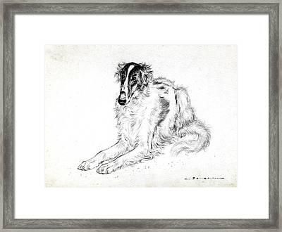 Saluki Framed Print by Kurt Tessmann