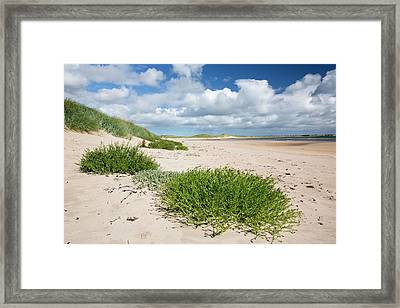 Sand Dunes At Beadnell Bay Framed Print by Ashley Cooper
