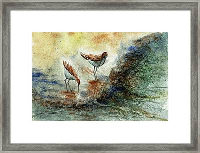 Sand Pipers Framed Print by Steven Schultz