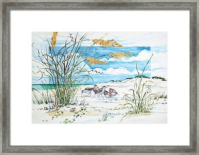 Sandpiper Dunes Framed Print by Paul Brent