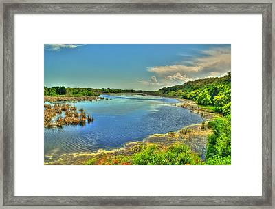 Framed Print featuring the photograph Sandpiper Pond by Ed Roberts