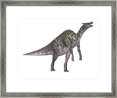 Saurolophus Dinosaur Framed Print