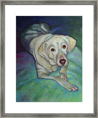 Savannah The Dog Framed Print