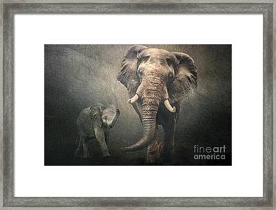 Framed Print featuring the photograph Save The Elephants by Brian Tarr