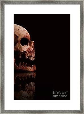 Scary Skull Framed Print by Jorgo Photography - Wall Art Gallery