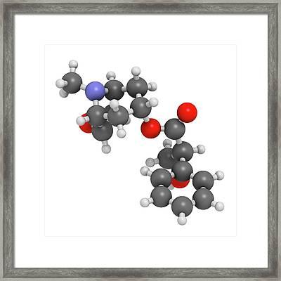 Scopolamine Anticholinergic Drug Molecule Framed Print by Molekuul