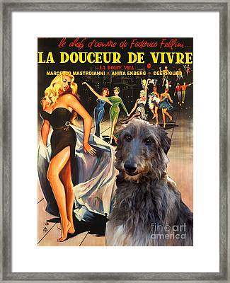 Scottish Deerhound Art - La Dolce Vita Movie Poster Framed Print by Sandra Sij