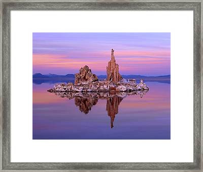 Sculpting Nature Framed Print