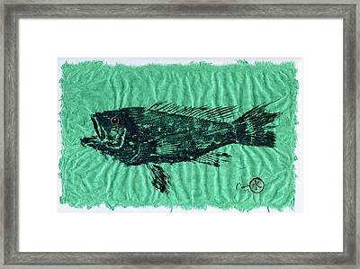 Sea Bass On Aegean Green Thai Unryu Paper Framed Print by Jeffrey Canha