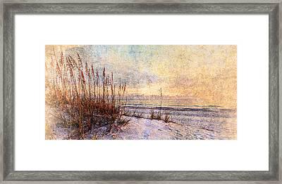 Sea Oats 5 Framed Print
