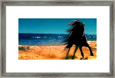 Seaborne Framed Print by Marcello Cicchini