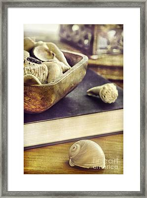 Seashells Framed Print by HD Connelly