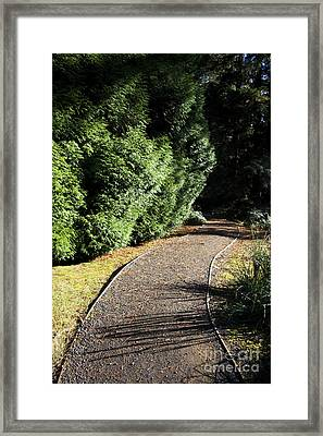 Secret Garden Path Framed Print by Jorgo Photography - Wall Art Gallery