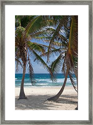 Serene Caribbean Beach  Framed Print
