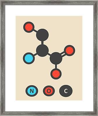 Serine Amino Acid Molecule Framed Print
