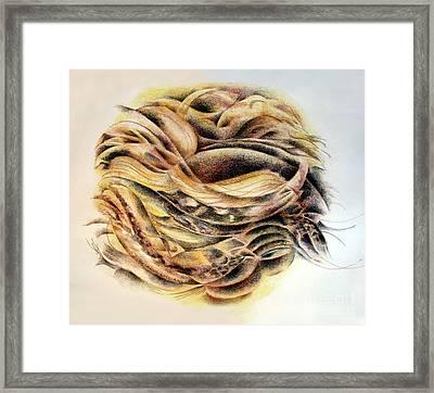 Serpentine Framed Print