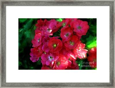 Framed Print featuring the photograph Shades Of Red by Mary Lou Chmura