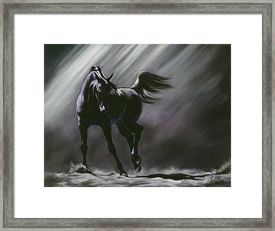 Shadow Dancer Framed Print by Kim McElroy