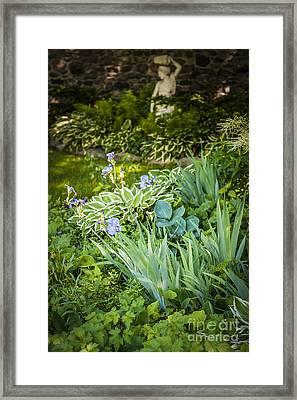 Shady Garden Framed Print
