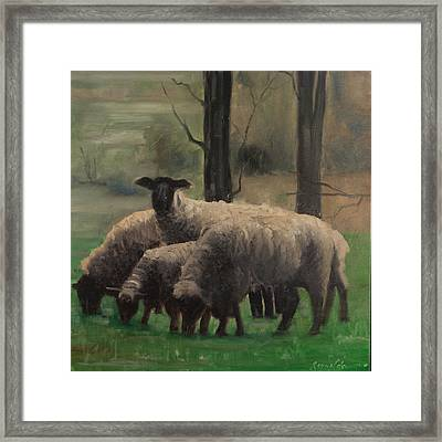 Framed Print featuring the painting Sheep Family by John Reynolds