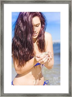 Shell Framed Print by Jorgo Photography - Wall Art Gallery