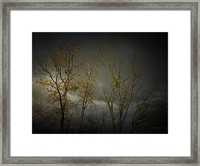 Shine 2 Framed Print