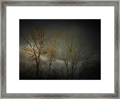 Shine 2 Framed Print by Cynthia Lassiter
