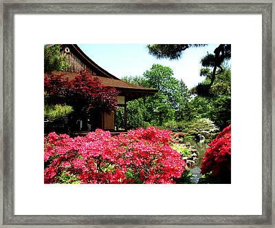 Shofusu Framed Print by Christopher Woods