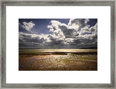 Shoreline Framed Print by Svetlana Sewell
