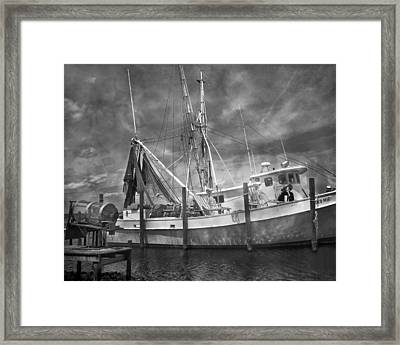 Shrimpin' Boat Captain And Mates Framed Print by Betsy Knapp