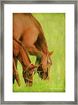 Side By Side Framed Print by Darren Fisher