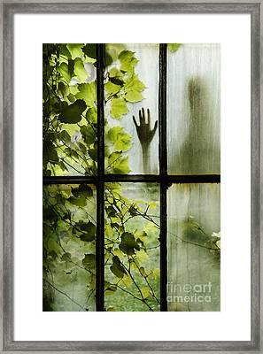 Silhouette Framed Print by Margie Hurwich
