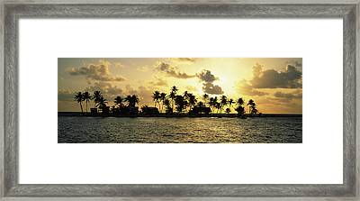 Silhouette Of Palm Trees On An Island Framed Print by Panoramic Images