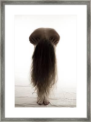Silhouette Framed Print by Sarka Olehlova