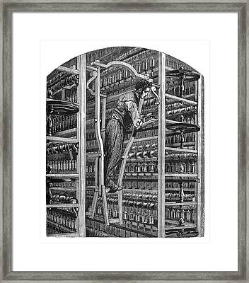 Silk Spinning Framed Print by Science Photo Library