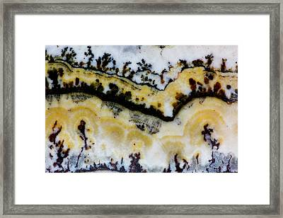 Silver Lace Onyx Framed Print by Darrell Gulin