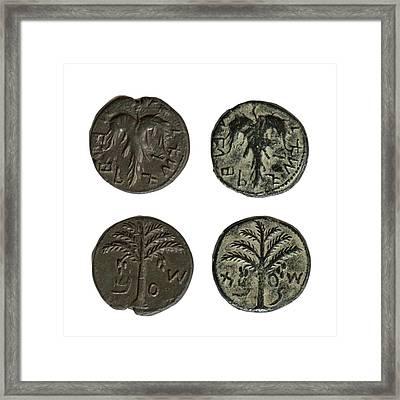 Simon Bar-kokhba Coins Framed Print