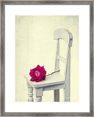 Single Red Rose Framed Print by Edward Fielding