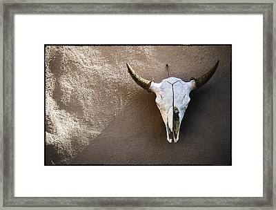 Skull Framed Print by Kelley King