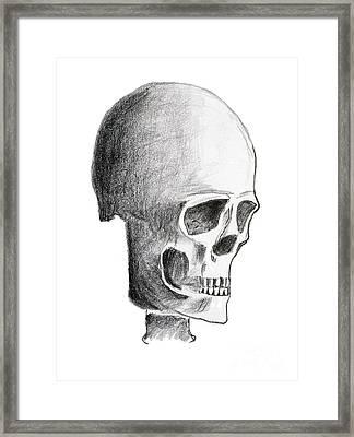 Skull Framed Print by Michal Boubin