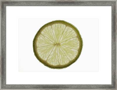 Slice Of Lime, Backlit Framed Print