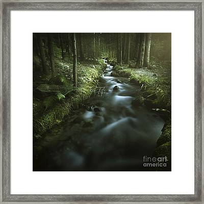 Small Stream In A Forest, Pirin Framed Print by Evgeny Kuklev