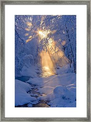 Small Stream In A Hoarfrost Covered Framed Print