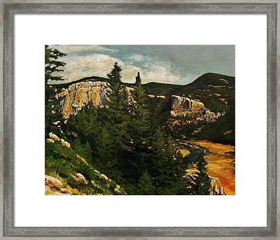 Smith River Framed Print by Suzanne Tynes