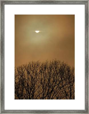 Smoke From A Woodland Fire Obliterates Framed Print