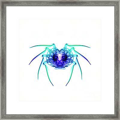 Smoke Spider 2 Framed Print