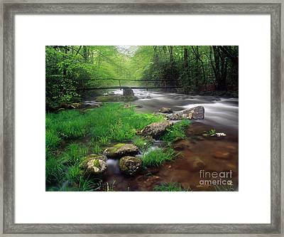 Smoky Mountain Stream 2009 Framed Print