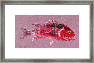 Gyotaku Snapper Framed Print by Captain Warren Sellers