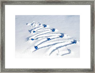Snow Tree Framed Print by Juli Scalzi